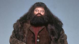 Hagrid kórházba került Floridában