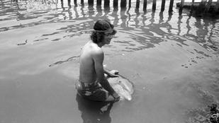 Tényleg létezik olyan ember, aki delfinnel csinálta