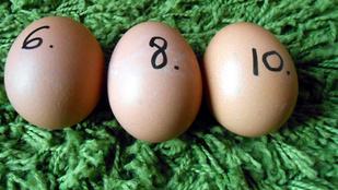 Rejtélyes gyűlölő dobálja tojással a házat
