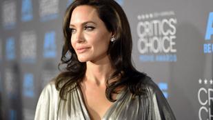 Angelina Jolie a petevezetékét és a petefészkeit is eltávolíttatta