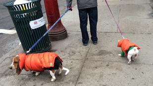 December óta szaros egy XVII. kerületi kutyajátszótér