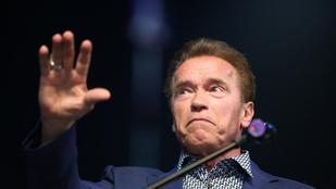 Csodás videó vacsora utánra: Schwarzenegger napszemüveget választ