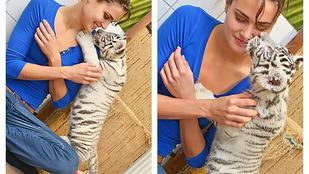 Jakabos Zsuzsa tigriskölykökkel cukiskodott