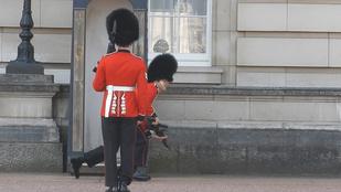 Annyira jó: elesett a Buckingham-palota őre!