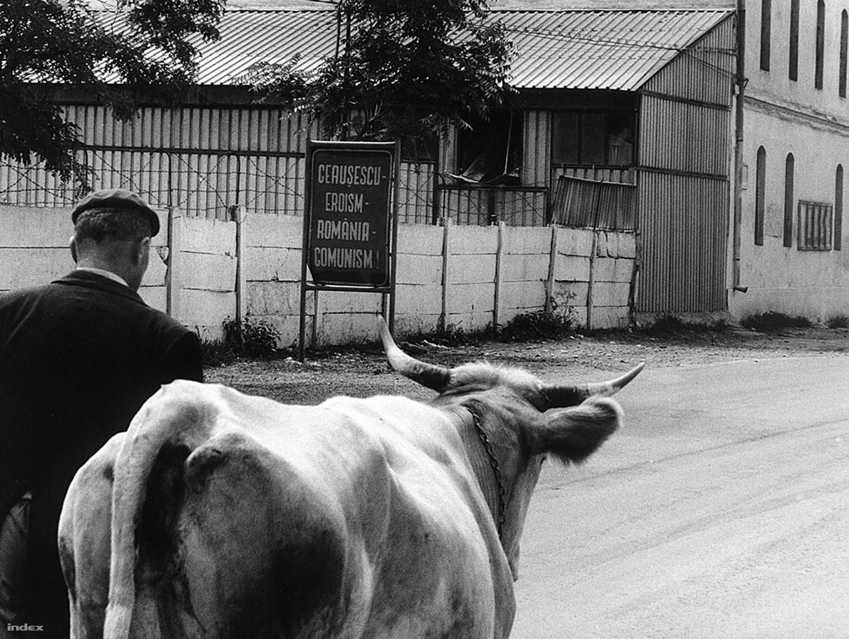 """""""Ceauşescu hősies, Románia kommunizmus"""" – hirdette a kiírás. 1988-ban a Magyar Hírlap külön sorozatot szentelt a határon túli magyarságnak. Szalay és a vele utazó újságíró ugyan elvileg turistaként indult Erdélybe, néhány nap után gyanúsnak kezdték vélni, hogy minden szállásukon négyes számú szobát kapnak. """"Akkor már pontosan tudtuk, hogy minden lépésünket figyelik."""" Amikor birtokba vették az egyik ilyen négyes szobát, magukra zárták az ajtót, és elkezdtek szexet imitálni. """"Teljes műsort vágtunk le nekik, rugóztattuk az ágyat, hangokat adtunk ki, és aztán mentünk tovább a következő szállodába, ahol megismételtük ugyanezt."""""""