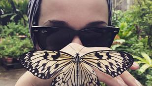 Katy Perry emlékeztetett minket a 2000-es évek egyik legkínosabb slágerére