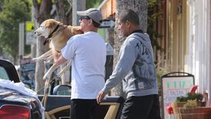 Be fog könnyezni a beteg kutyáját az ölében cipelő Jean-Claude Van Damme-tól