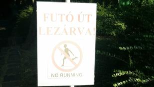 A margitszigeti futópályával csak a baj van