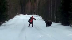 Így kell beparáztatni egy hatalmas barna medvét