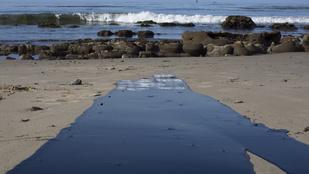 Brad Pitték magánstrandját is elérte a kaliforniai olajfolt