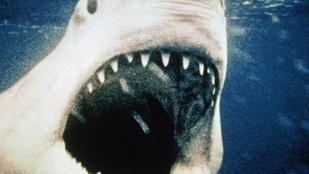 40 éves lett Spielberg kultfilmje, a Cápa