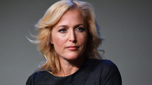 A nap kérdése: Gillian Anderson most mellbimbót villantott vagy sem?