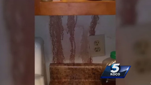A konyha, ahol vért árasztottak a falak