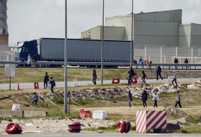 Angliába induló menekültek várakoznak a kamionok között az angol-francia határon, Calaisnál.