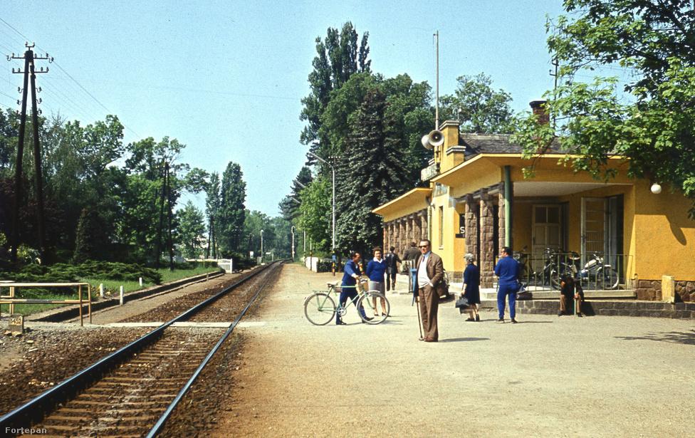 Autóval jöttünk le a Magyar tengerhez, vonattal megyünk haza. Ez az 1975-ös balatonlellei kép amilyen színes olyan lehangolóan mutatja be a nyár végét. Hiszen mindig ez volt a legszomorúbb pillanat a balatoni nyaralásokban: ácsorogni az állomáson és várni, hogy az egyetlen magányos sínpáron befusson végre a vonatunk, és hazazötymörögjünk a szürke hétköznapokba.