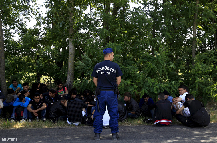 Afgán menekülteket vesznek őrizetbe a szerb-magyar határnál, Ásotthalom mellett.