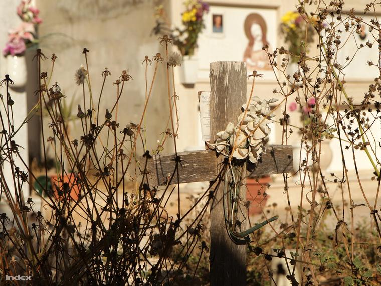Galéria: Lampedusa: Álomsziget, ahol gyűlölhetnék a menekülteket (12 kép)