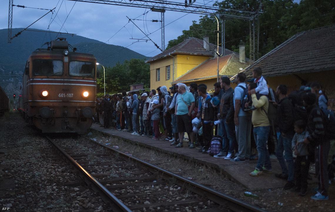 Szerbiába tartó vonatra váró menekülte Macedóniában