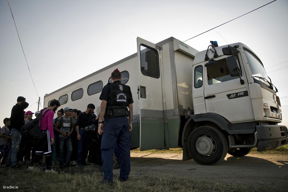 A magyar oldalon elfogott menekültekhez rabomobilt hívnak a rendőrök, de néha annyian vannak, hogy nincs elég rendőrségi jármű, olyankor buszokat kell bérelni az elszállításukhoz.
