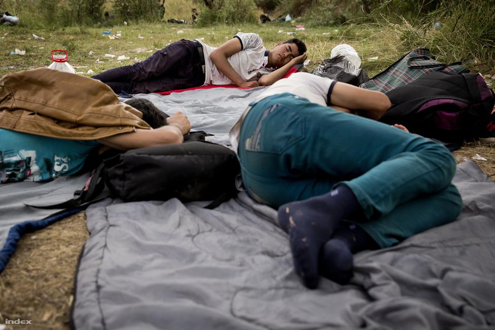 A magyar rendőrökkel és a polgárőrökkel beszélgetve rémtörténeteket lehet hallani arról, milyen körülmények között utaznak a migránsok. Hallani olyan esetekről, amikor menekült asszonyok az erdőben szülnek meg, vagy éppen veszítik el a csecsemőiket. Hivatalosan ilyen esetekről nem nagyon lehet tudni.