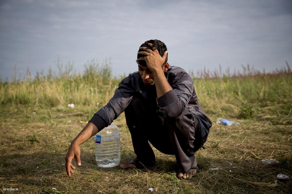 A Szerbiából érkező illegális migránsok többsége afgán, szír, de vannak koszovóiak is. Az Afganisztánból és Szíriából érkezők gyakran két uniós államon, Görögországon és Bulgárián is keresztül mennek, míg Szerbiába érkeznek.