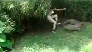 Ez a nő olyan idióta, hogy bemászott egy állatkerti krokodilhoz