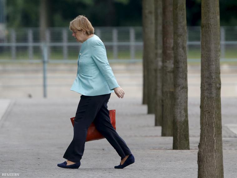 Merkel veresége?