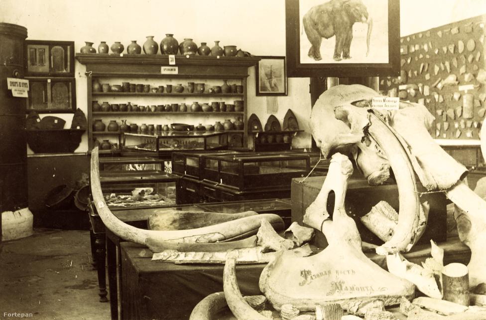 A skotovói táborba került Lőw Márton a közeli múzeumban kapott munkát, ahol nem csak mammutcsontokkal foglalatoskodott, de civil szakmáját is gyakorolhatta, az ásványtani részt bízták rá. A foglyok szabadidejükben a habarovszki Csaskacsaj kávéházban és az Esplanátó Szállóban időztek.