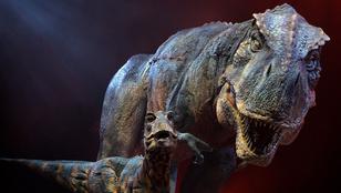 Fedezzen fel magyar dinoszauruszokat a Bakonyban!