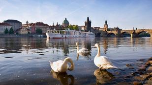 Ezek Európa legklasszabb hajóhotelei