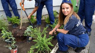 Három fontos kép arról, ahogy rendőrök kertet építenek