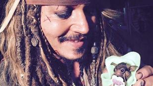 Dobjon el mindent: Johnny Depp denevérbébit etet
