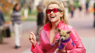 Tudja, ki lett volna Doktor Szöszi, ha nem Reese Witherspoon?