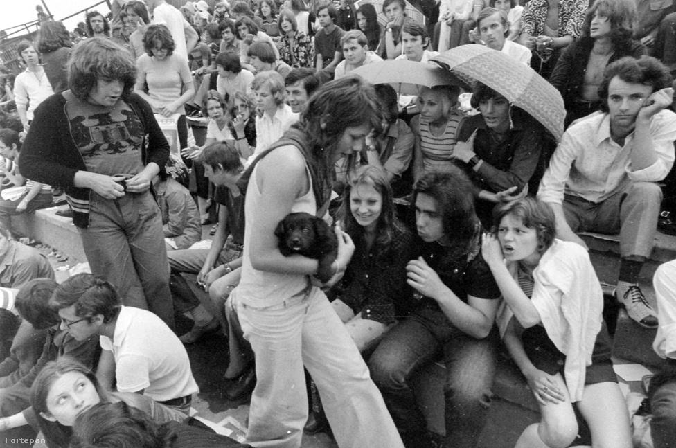 """1973-ban a magyarországi fiatalok egy kicsit megérezhették, mekkora buli lehetett 1969-ben Woodstock. A DVTK (Diósgyőr-Vasgyári Testgyakorlók Köre) stadionjában rendezett rockfesztivált a mai napig """"magyar Woodstock""""-ként emlegetik, mivel a hazai beatmozgalom legnagyobb Beatles-, Rolling Stones-, Kinks-, Animals- és Jimi Hendrix-rajongói léptek fel: Koncz Zuzsa, az Illés, Demjén Ferenc és Bergendyék. Ekkor történt, hogy tömegverekedés tört ki a Bergendy-együttes koncertje alatt, Bródy Jánost pedig egy félreértés miatt államellenes izgatás vádjával rabosították. Koncz Zsuzsa szerencsére mellette tanúskodott, így megúszta 5000 forint pénzbírsággal. Azt persze nem tudni, hogy a trapéznadrágos hippilány ölében levő kiskutyának mennyire jött be a hangos zene és az embertömeg, de ha abból indulunk ki, hogy a kutya mindenhol szeret lenni, ha ott a gazdájával együtt lehet, olyan nagy baj biztos nem történt."""