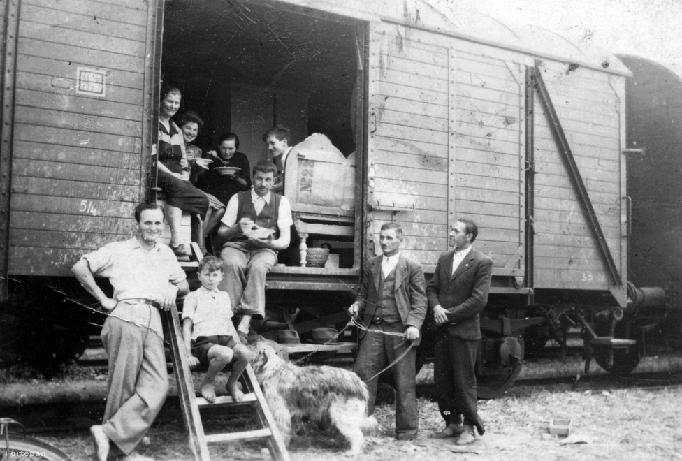 A második világháború után a csehszlovák–magyar lakosságcsere egyezmény értelmében felvidéki magyarok tízezreit telepítették át 1947-ben Magyarországra, és ezzel egy időben magyarországi szlovákok települtek át Csehszlovákiába. A csallóközi magyarok főleg a Németországba kitelepített sváb lakosság házait kapták meg Pest megyében, Nógrádban, a Dél-Dunántúlon és a Dél-Alföldön. A képen látható család annak ellenére vidáman mosolyog a fotós felé, hogy az összes vagyonuk annyi, amennyi bútort egy marhavagonba be tudtak zsúfolni. A szokásaikon az átélt szörnyűségek sem változtattak: a családi ebédhez illik szépen kiöltözni, és a kutyasétáltatást sem úszhatja meg senki.