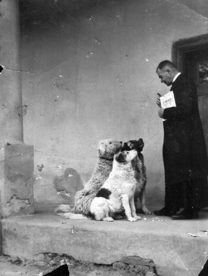 A kutyákkal való együtt élés legfontosabb szabálya: meg kell nekik mutatni, ki a falkavezér, ahogy a fenti, falusi tanítónak kinéző férfi is tette 1935-ben. Rendetlen kutya ugyanis nem létezik, csak rossz gazdi. Ha a kutya nem kap feladatokat az embertől, akkor nem tudja levezetni a felesleges energiáit, és csupa olyasmit fog tenni, aminek az ember nem örül. Például szétszedi a lakást, megrágja a papucsot vagy beleharap a postás nadrágszárába.