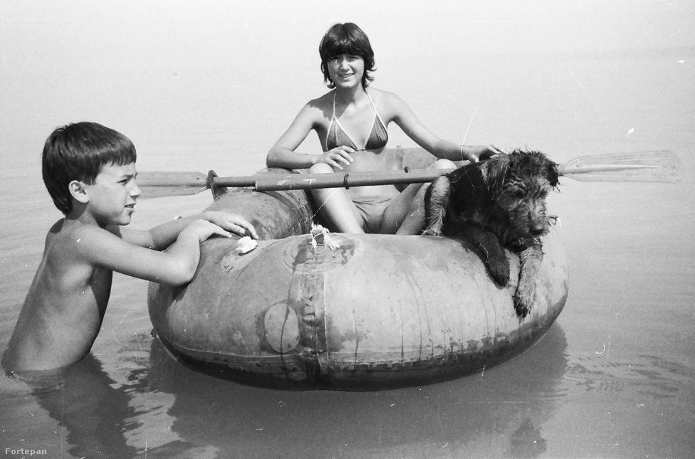 Idilli családi fotó 1984-ből. A kisfiúnak csak derékig érő víz alapján valószínűleg a Balatonon készült a kép, ahol vagy a szülők munkahelyi beutalójával vagy a szakszervezet segítségével kapott egy hét pihenést egy lengőtekés-pingpongasztalos üdülőben a család. Esetleg egy rokonnak volt a tónál Zimmer Frei-táblás nyaralója, ahová úgy kellett bekönyörögniük magukat arra az egyetlen hétvégére, amikor épp nem voltak német vendégek. Mára sajnos a kutyával nyaralás is bonyolultabb lett, főleg a vízparton, mivel a jogszabályok szerint a strandként és hivatalos fürdőhelyként kijelölt partszakaszokra tilos kutyával bemenni, így el sem juthatunk velük a vízhez. A kiskaput azok a kutyabarát szálláshelyek jelenthetik, amelyeknek saját, elkerített vízpartjuk van – ezeknek a listáját itt lehet átböngészni.