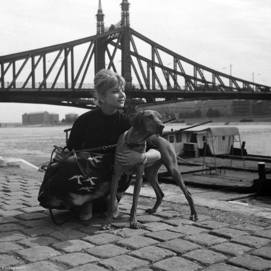 Csinos nő aranyos kutyával pózol – az ilyesmi már jóval a lájkvadászós Facebook-korszak előtt is népszerű dolognak számított. A fenti kép 1966-ban készült a Duna-parton, háttérben a Szabadság-híddal, és az a Házy Erzsébet nevű operaénekes látható rajta a vizslájával, aki nemcsak a korszak újságcímlapokon mosolygó szexszimbólumának számított, de szakmailag is elismerték: Kossuth-díjas érdemes és kiváló művész volt.