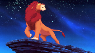 Az oroszlánkirály is megbosszulná Cecilt, a zimbabwei oroszlánt