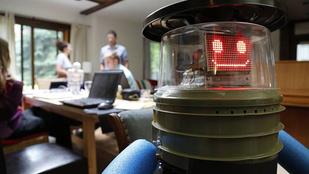 Két hét alatt megölték a stoppoló robotot