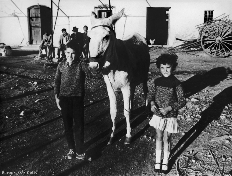 Helyi gyerekek, akik látták a zuhanó gépet Palomares felett