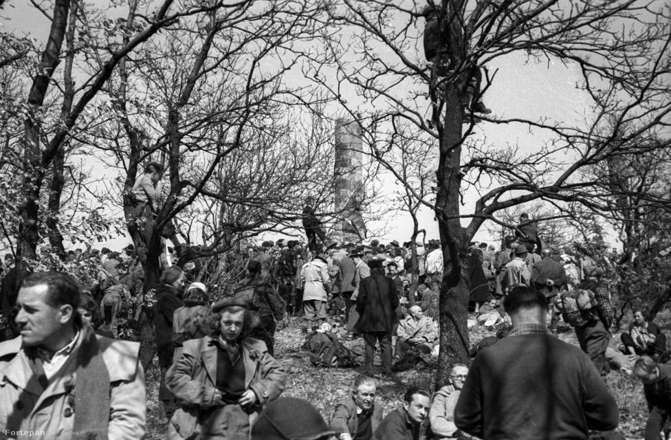 Vöröskő-szikla, április 4-i emléktúra, természetbarát találkozó.