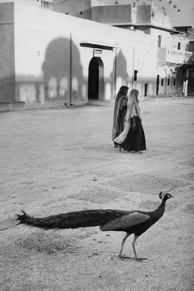 Dzsaipur, India (1956)