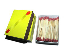 Mircea Cantor: Double Heads Matches (2002-2003)