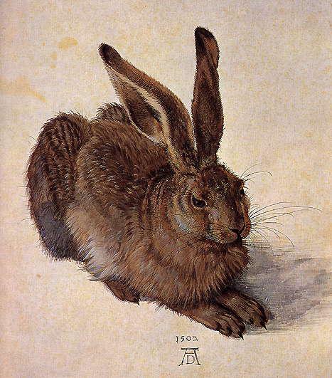 E nyúl ugyan nem kék, de Dürer