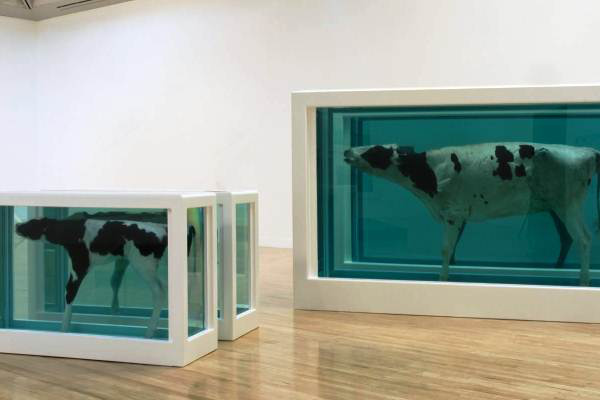 Damien Hirst: Mother and Child Divided, 1993