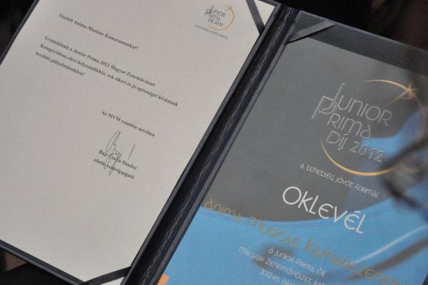 2013-as zenei Junior Prima-díjak