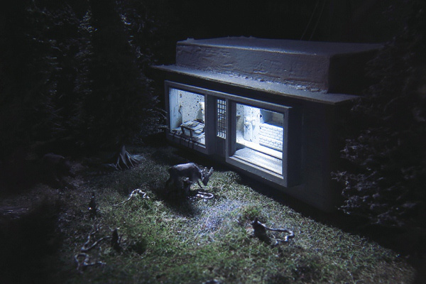 Icko Dávid: There is Hopper in the wood (detail), Mixed Media, 2012.