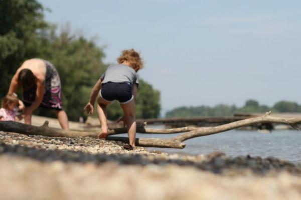 Danube flow - Hív a Duna!