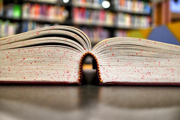 Könyvmecénás